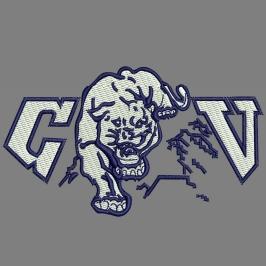 CV Cougar